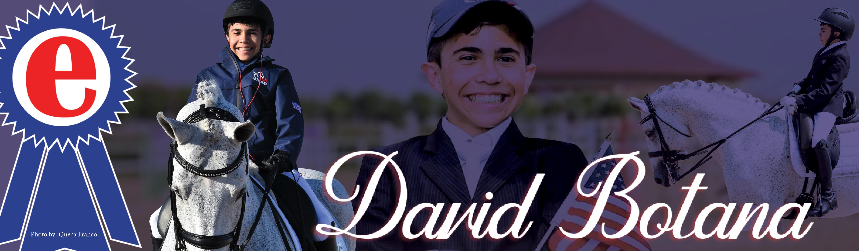 David Botana Para Dressage Rider